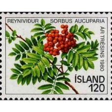ARBRES - 25 TIMBRES DIFFERENTS