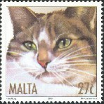 Chats - 100 timbres différents