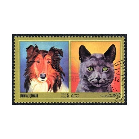 CHATS ET CHIENS - 100 TIMBRES DIFFERENTS